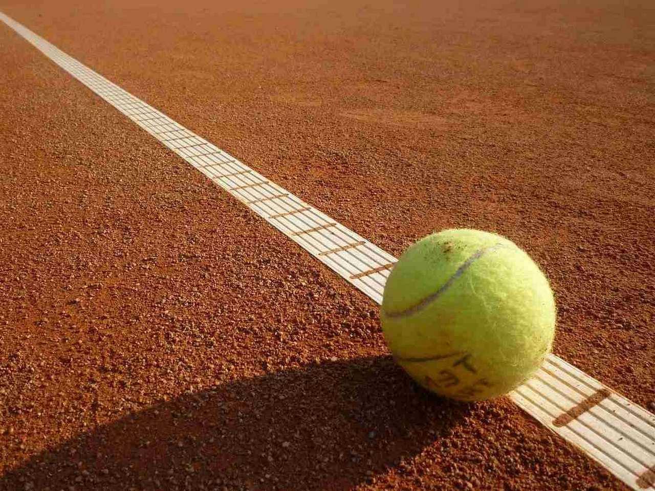 sport, sports, sportart, sportarten